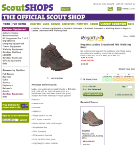 Screen Shot Scout shops copy example